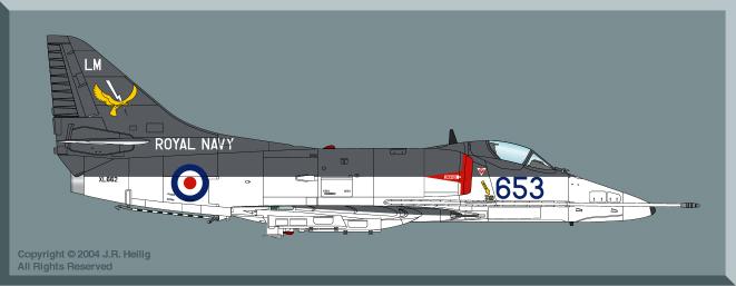 Skyhawk in FAA Service by Jennings Heilig